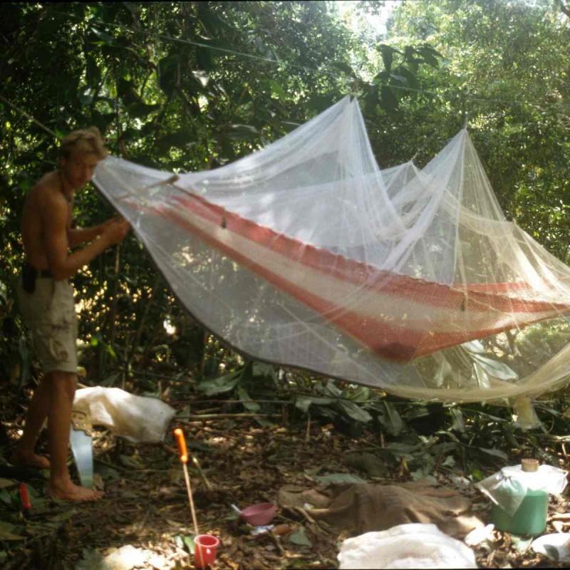 media/image/amazonas-geschichte2.jpg